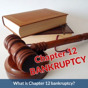 Chapter 12 - Bankruptcy Basics